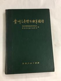 贵州主要野生牧草图谱