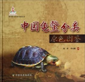 9787109178502中国龟鳖分类原色图鉴