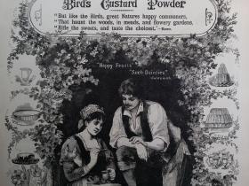 1884年 雀牌吉士粉 Birds Custard Powder (吉士粉可用来做糕点、果冻) 广告画  可作墙饰、生日礼物、收藏 或 学术研究