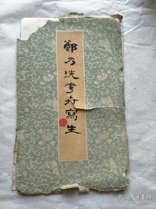 郑乃说花卉写生(窄16开)