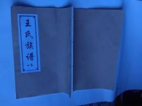 《王氏族谱 卷四》 汶上