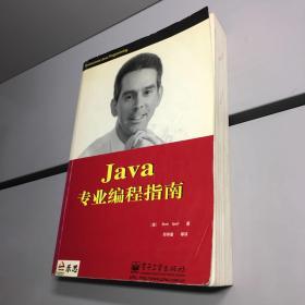Java专业编程指南 【一版一印 正版现货 内页干净  实图拍摄 看图下单】