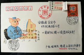 趣味封:1995年乙亥猪邮票挂号自然实寄封(非首日)