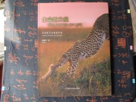 生命的力量-—非洲野生动物摄影集