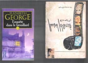 法语小说 Enquête dans le brouillard / Elizabeth George