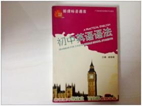 R139802 英语锦囊--新课标资源库--初中英语语法(一版一印)(有库存)