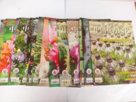 中国花卉园艺2007年19本