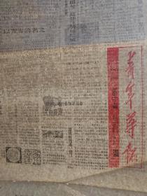 青年导报1+河南省群众文化报1