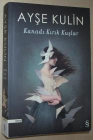 土耳其语原版书 Kanadı Kırık Kuşlar