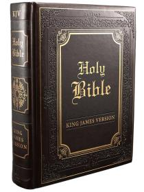 英文 King James Version Illustrated Edition Faux Leather Bound 仿皮面 棕色 精装硬皮 金边
