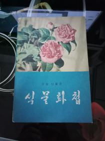 韩文原版:《식물화첩》如图