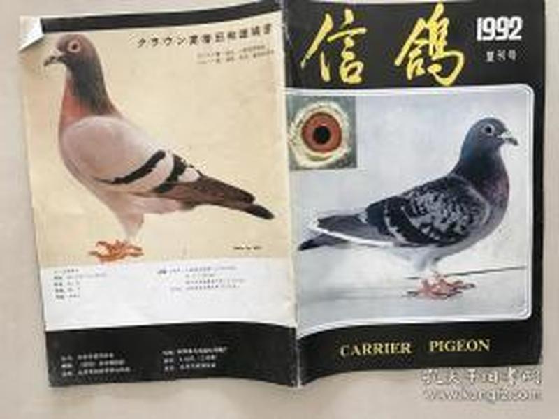 信鸽1992复刊号
