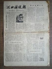 河北科技报 1981年9月16日总388期(次声-威胁生命之声、饮茶宜与禁、雀斑、风力发电机、修补塑料制品、化肥知识)
