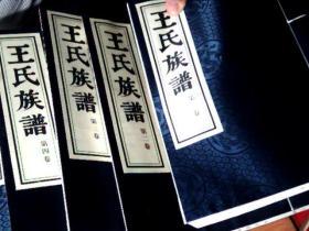 维扬江都大桥东乡陆家庄 王氏族谱 第一卷至第八卷 8本线装 配盒         厨房台