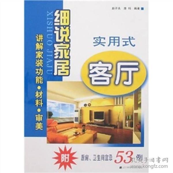 实用式客厅:细说家居