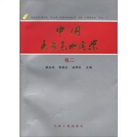 9787502116651中国天然气地质学(卷二)