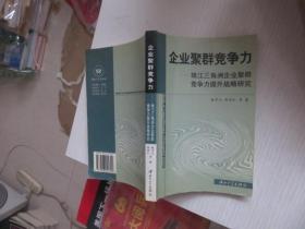 企业聚群竞争力(珠江三角洲企业聚群竞争力提升战略研究)