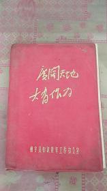文革笔记本 靖宇县知识青年工作办公室 笔记本 塑料皮