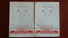 和县卜陈公社红民校试用课本《语文》第一册第二册,九联大队党支部革委会编写。少见内容和形式的有趣课本