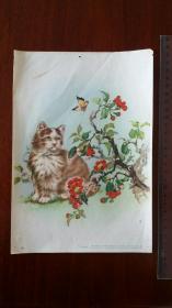 何逸梅-猫-1957年1月18次印刷-上海画片出版社
