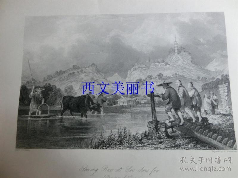 【现货 包邮】《苏州府,播种水稻》1845年铜/钢版画 托马斯-阿罗姆 (Thomas Allom)作品 尺寸约26.2 × 20.5厘米 出自中华帝国图景(货号18021)
