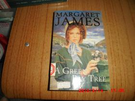 【英文原版】A Green Bay Tree(一棵绿色的海湾树)