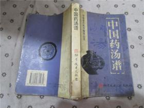 中国药汤谱-中国食疗药疗精华丛书