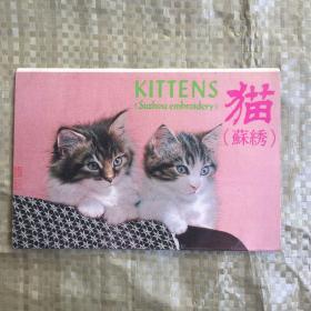 明信片:猫  4张