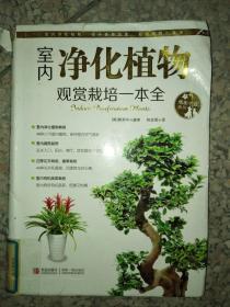 正版图书情趣生活系列:室内净化植物观赏栽培一本全9787543686069