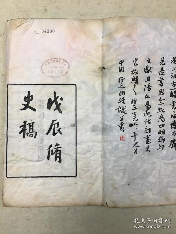 戊辰修史稿