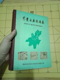 稀缺资料---只印刷800册---湖南省城步苗族自治县《农业区划报告集》-----16开精装   书品如图  内容完整