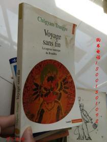 Voyage sans fin:La sagesse tantrique du Bouddha