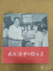 红色收藏,毛主席视察 大跃进中的徐水县