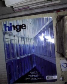 HINGE  2011 195