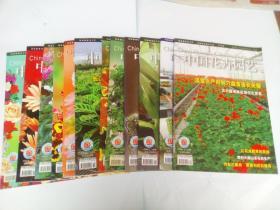 中国花卉园艺2006年13本