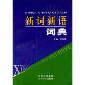 新词新语词典