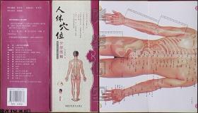 人体穴位分部图解(折页式)☆