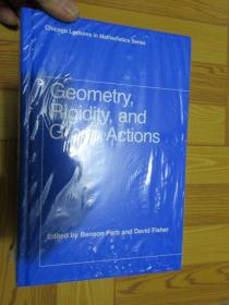 Geometry, Rigidity, and Group Actions    (外文原版)    全新未開封
