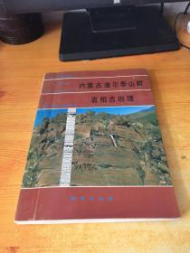 内蒙古渣尔泰山群岩相古地理