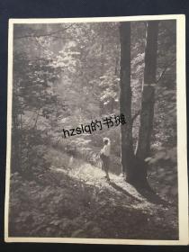 【经典摄影】1920年代美国现实主义先锋摄影系列_树林中的阳光与凝望(美籍摄影家F.Y.Ogasawara作品)