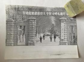 老照片:山东大学八十年代校门