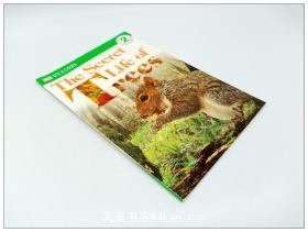 树木的生活 DK Readers: The Secret Life of Trees 英文原版
