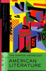 The Norton Anthology of American Literature: 1945 to Present, Vol. E[诺顿英国文学选集系列]