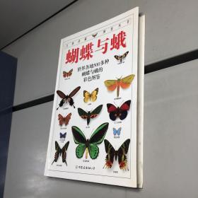 蝴蝶与蛾:全世界500多种蝴蝶的彩色图鉴 (自然珍藏图鉴丛书)(全铜版纸彩印)【一版一印 95品+++ 内页干净 实图拍摄 看图下单 收藏佳品】