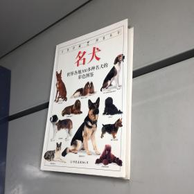 名犬:全世界300多种名犬的彩色图鉴 (自然珍藏图鉴丛书)(全铜版纸彩印)【一版一印 95品+++ 内页干净 实图拍摄 看图下单 收藏佳品】