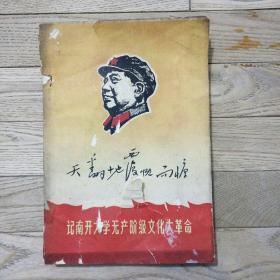 天翻地覆慨而慷:记南开大学无产阶级文化大革命