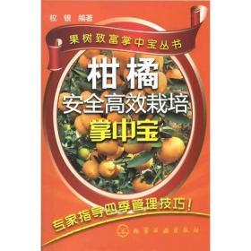 果树致富掌中宝丛书:柑橘安全高效栽培掌中宝