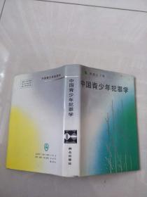 中国青少年犯罪学