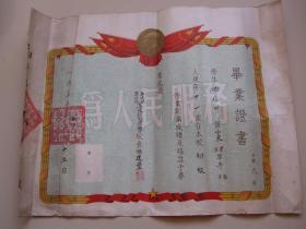 烟台牟平55年毛像毕业证书【盖有牟平县第七区高陵村~大印】