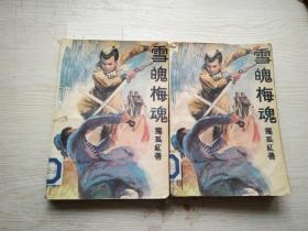 雪魄梅魂 上下(共2册)(馆藏)